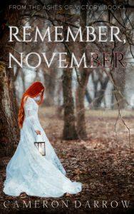 Remember, November by Cameron Darrow