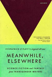 Meanwhile, Elsewhere cover