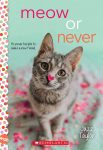 Meow or Never cover