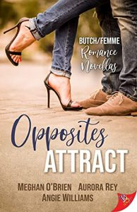 Opposites Attract cover