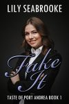 Fake It by Lily Seabrooke cover